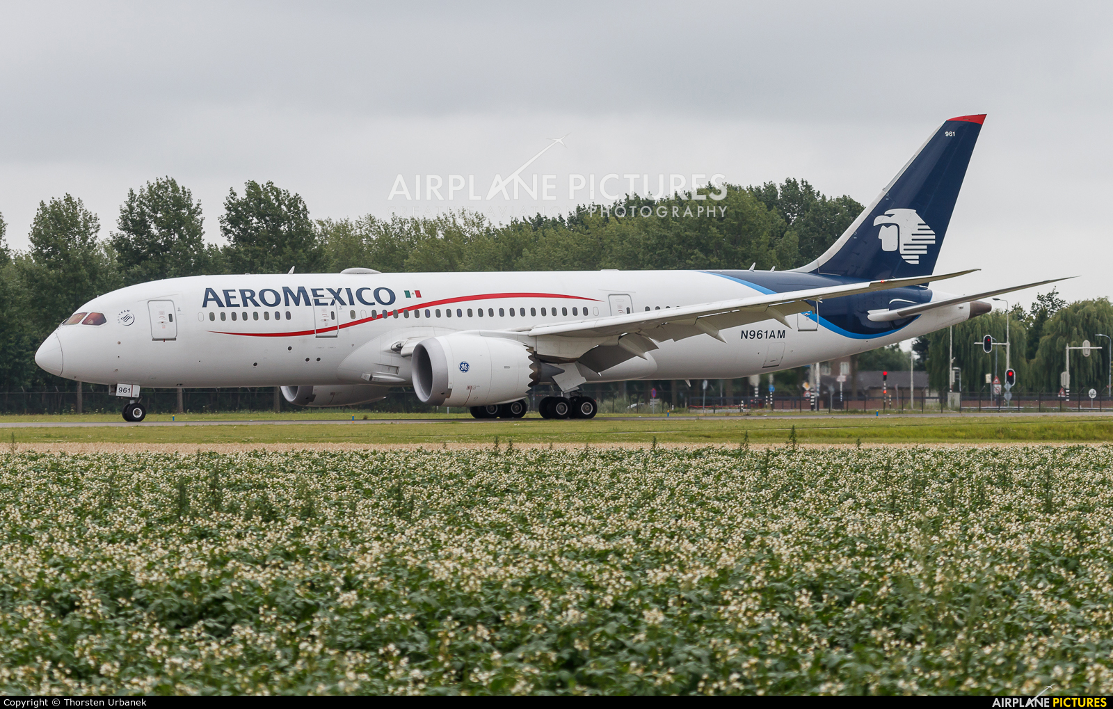 Aeromexico N961AM aircraft at Amsterdam - Schiphol