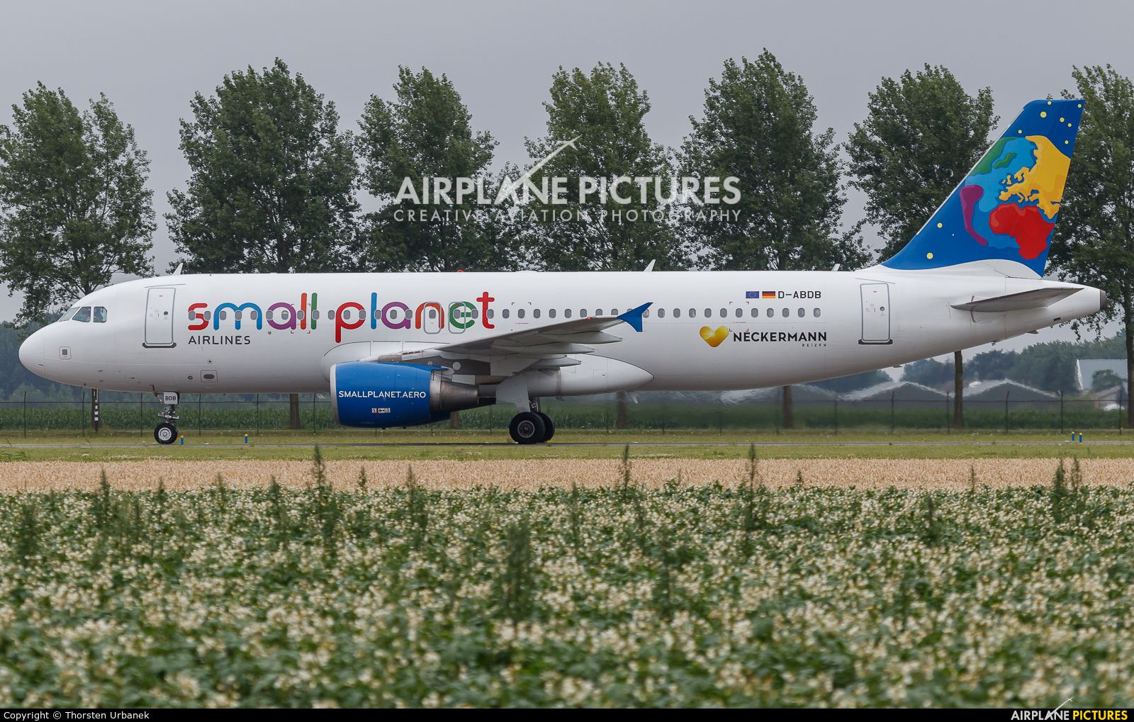 Small Planet Airlines D-ABDB aircraft at Amsterdam - Schiphol