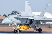C.15-39 - Spain - Air Force McDonnell Douglas EF-18A Hornet aircraft