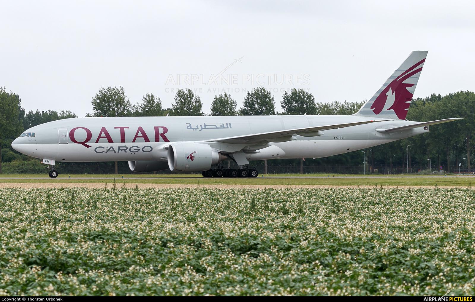 Qatar Airways Cargo A7-BFH aircraft at Amsterdam - Schiphol