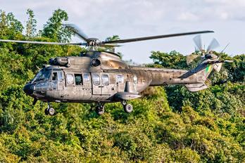 4005 - Brazil - Army Eurocopter AS532 Cougar