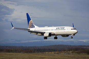 N17244 - United Airlines Boeing 737-800