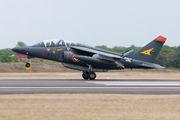 "E135 - France - Air Force ""Patrouille de France"" Dassault - Dornier Alpha Jet E aircraft"