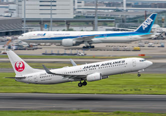 JA338J - JAL - Japan Airlines Boeing 737-800