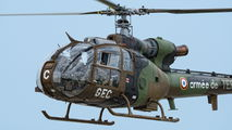 GEC4207 - France - Army Aerospatiale SA-341 / 342 Gazelle (all models) aircraft