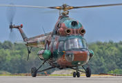 3607 - Poland - Army Mil Mi-2 aircraft