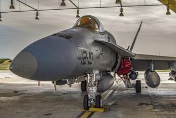 - - Spain - Air Force McDonnell Douglas EF-18A Hornet
