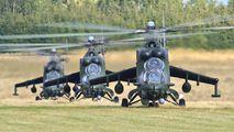 Poland - Army 739 image
