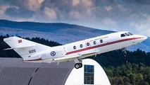 Norwegian Air Force Falcon 20 visits Bergen title=