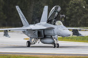 A44-201 - Royal Australian Air Force Boeing F/A-18F Super Hornet aircraft