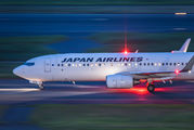 JA334J - JAL - Japan Airlines Boeing 737-800 aircraft