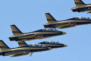 "- - United Arab Emirates - Air Force ""Al Fursan"" Aermacchi MB-339NAT aircraft"