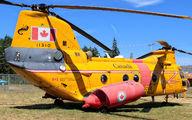 11310 - Canada - Air Force Boeing Vertol CH-113A Labrador aircraft