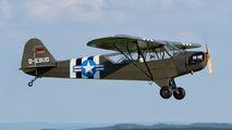 D-EBUG - Private Piper L-4 Cub aircraft