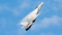 C15-39 - Spain - Air Force McDonnell Douglas F/A-18A Hornet aircraft