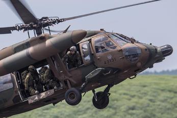 34131 - Japan - Ground Self Defense Force Mitsubishi UH-60J