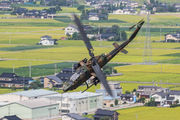 Japan - Ground Self Defense Force JG-3491 image