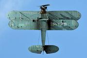 SP-YPB - Silvair Polikarpov PO-2 / CSS-13 aircraft