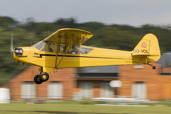 OO-YOL - Private Piper J3 Cub