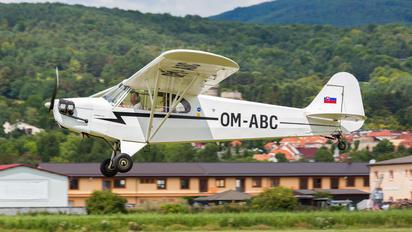 OM-ABC - Private Piper J3 Cub