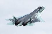 509 BLUE - Russia - Air Force Sukhoi T-50 aircraft