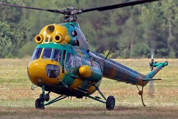 EW-124AO - Belarus - DOSAAF Mil Mi-2