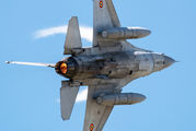 1610 - Romania - Air Force General Dynamics F-16BM Fighting Falcon aircraft