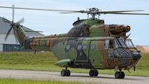 1244 - France - Army Aerospatiale SA-330 Puma aircraft