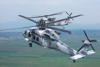 ANX-2306 - Mexico - Navy Sikorsky UH-60M Black Hawk