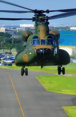 5024 - Japan - Ground Self Defense Force Kawasaki CH-47J Chinook