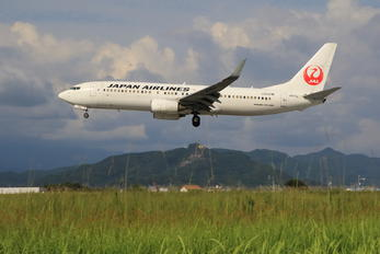 JA311J - JAL - Japan Airlines Boeing 737-800