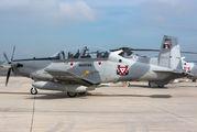 ANX-1317 - Mexico - Navy Hawker Beechcraft T-6C Texan II aircraft