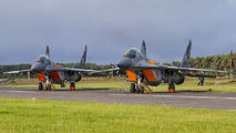 - - Poland - Air Force Mikoyan-Gurevich MiG-29A aircraft