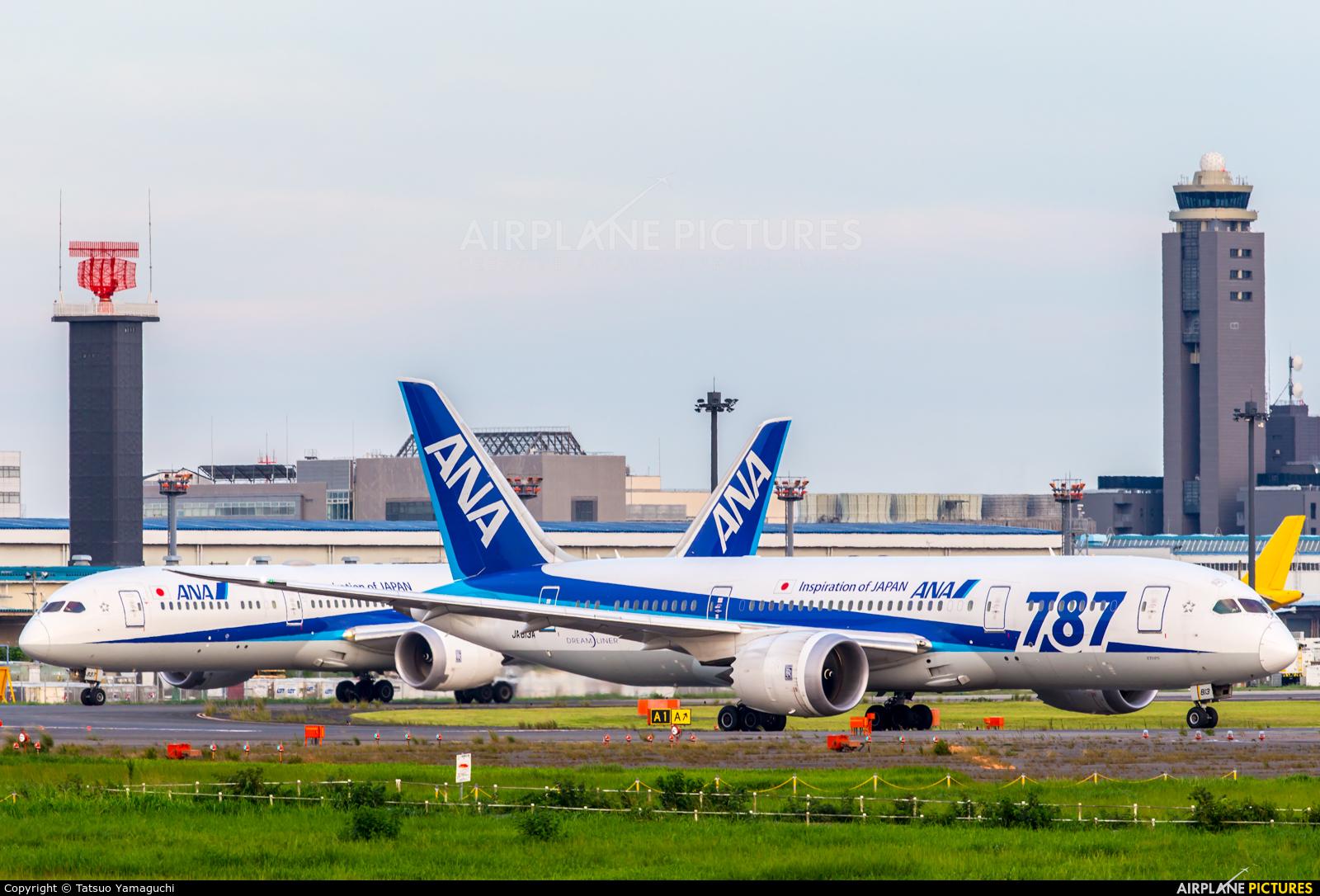 ANA - All Nippon Airways JA813A aircraft at Tokyo - Narita Intl
