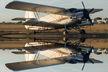 Zibet Exim - Antonov An-2 YR-AOZ
