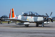 6612 - Mexico - Air Force Hawker Beechcraft T-6C Texan II aircraft