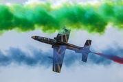 "441 - United Arab Emirates - Air Force ""Al Fursan"" Aermacchi MB-339NAT aircraft"