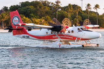 8Q-TME - Trans Maldivian Airways - TMA de Havilland Canada DHC-6 Twin Otter