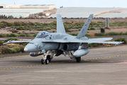 C.15-29 - Spain - Air Force McDonnell Douglas EF-18A Hornet aircraft