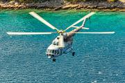 H-202 - Croatia - Air Force Mil Mi-8MTV-1 aircraft