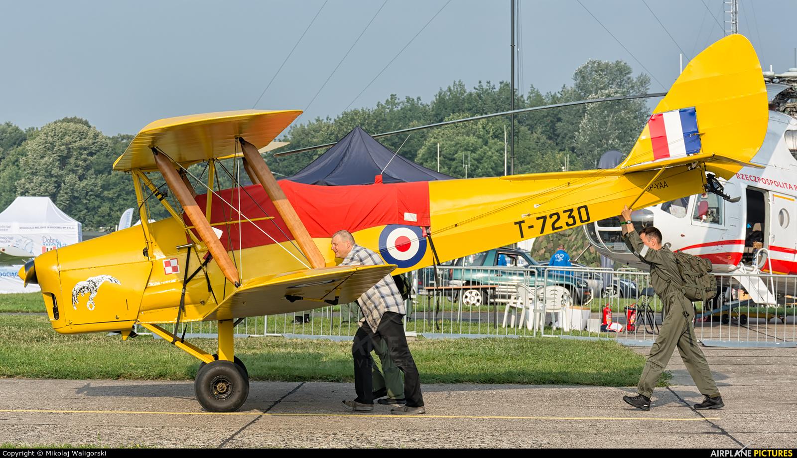 Private SP-YAA aircraft at Radom - Sadków