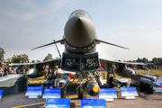 Germany - Air Force 31+11 image