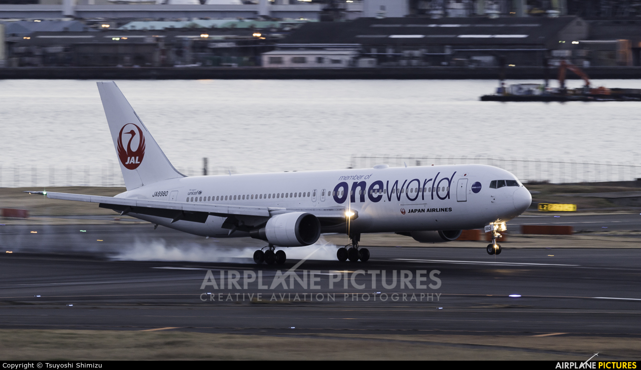 JAL - Japan Airlines JA8980 aircraft at Tokyo - Haneda Intl