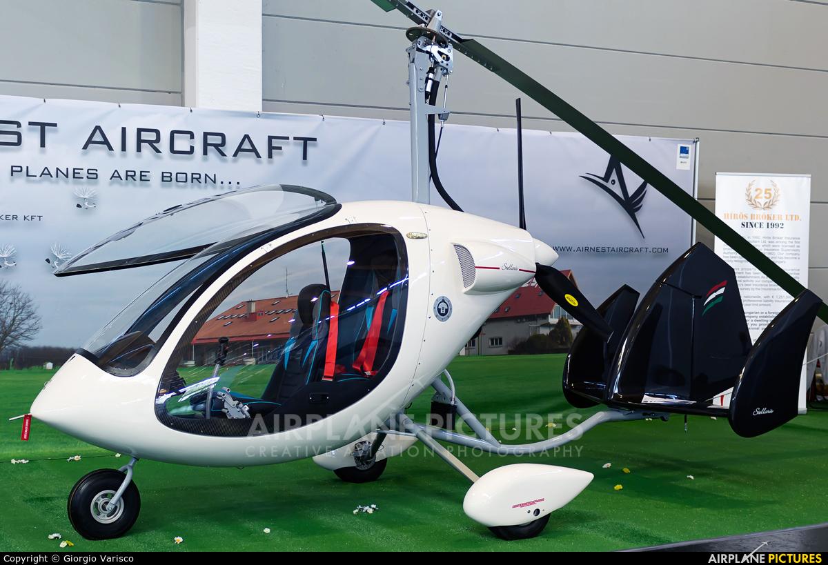 Private - aircraft at Friedrichshafen