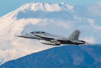 - - USA - Navy Boeing F/A-18F Super Hornet