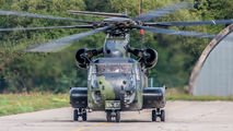 84 + 87 - Germany - Army Sikorsky CH-53G Sea Stallion aircraft