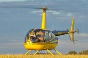 D-HALQ - Private Robinson R44 Astro / Raven aircraft