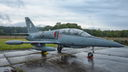 #6 Lithuania - Air Force Aero L-39ZA Albatros 16 taken by Roman N.