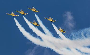 - - Baltic Bees Jet Team Aero L-39C Albatros