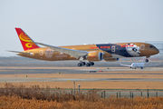 New Boeing 787-9 for Hainan painted in gold Kung Fu Panda special colours title=